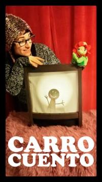 CARRO-300ancho